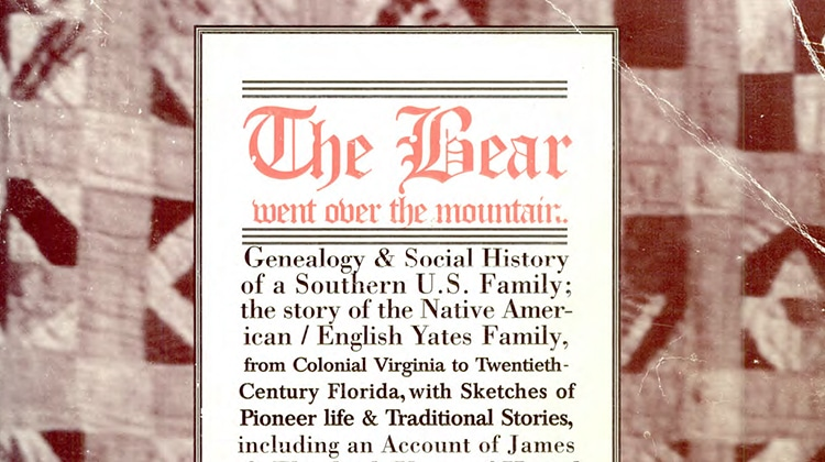 The Bear wen over the Mountain Book