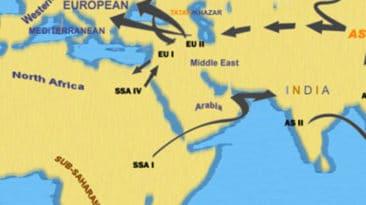 Ethnic Motif Map